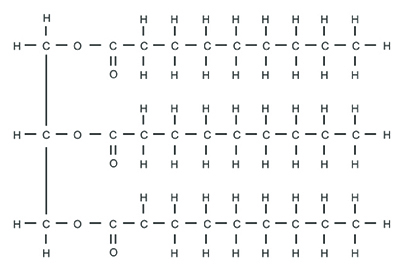 This figure shows the chemical structure of a molecule. The left side of the molecule contains three vertically oriented carbons bonded to each other. Each carbon is also bonded on its right side to an oxygen. Each oxygen is itself bonded on its right side to a long chain of carbons and hydrogens. Therefore, there are three of these long carbon-hydrogen chains within the molecule.